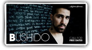 bushido_2013_slide